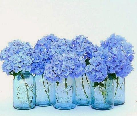 Blue Bell Inspirations