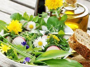 Gesund und völlig umsonst! Diese sieben essbaren Wildpflanzen sollten Sie pflücken und probieren. Die besten Rezepte für Wildkräuter und essbare Blüten. | EAT SMARTER