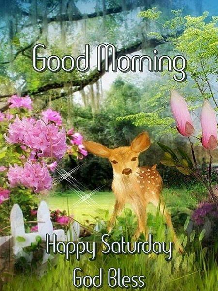 Good Morning. Happy Saturday. God Bless.