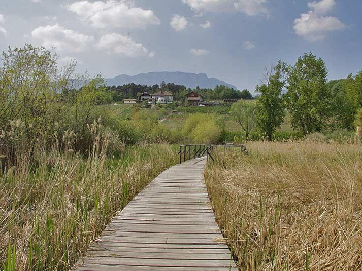 Von Kaltern durch das Frühlingstal zu den Montiggler Seen (leicht)