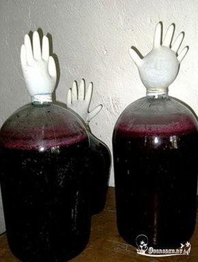ВИНОГРАДНОЕ ВИНО В ДОМАШНИХ УСЛОВИЯХ. Далее текст автора. Если у вас дома растет обыкновенный виноград, и вы даже не знаете, как называется этот сорт, поздравляю вас! Из этого простого сорта можно сделать прекрасное виноградное вино в домашних условиях, главное, соблюдать рецепт и не нарушать технологию. Когда виноград созреет, а об этом будете знать только вы, потому, что сорта все разные и срок созревания у всех разный, собрать его. Из двух больших ведер винограда получится приблизит...