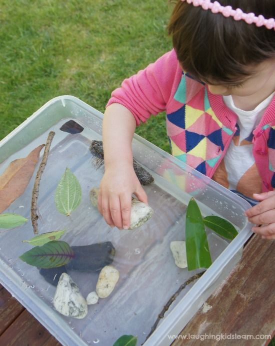 ** Sink or float experiment with nature - Laughing Kids Learn