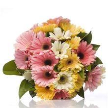 Flower Bouquets Online - Delivery NZ Wide | Wild Poppies Florist