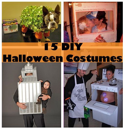 #Halloween #DIY #Costume for #Kids, #Dogs & #Adults.   Click for all 15: http://blog.jellifi.com/2013/09/09/diy-halloween-costumes/