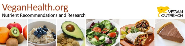 Taurine & Carnitine Essential Supplements for Vegans
