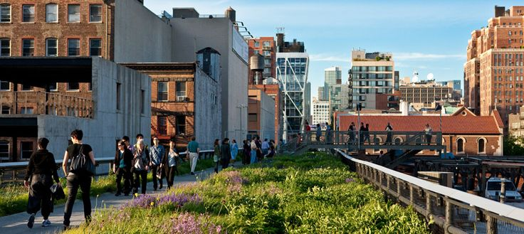 chelsea highline- NYC