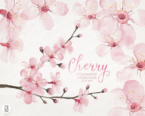 Watercolor cherry blossom, cherry tree, sakura, hand painted spring flowers, blossoms, clip art, watercolor invite, diy invitation, card 217