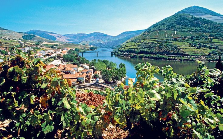 I bring Douro valley in my heart #dourovalley