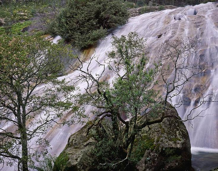 Lady Bath Falls, Mount Buffalo National Park, Victoria, Australia. Toyo 45AII, Schneider 210mm APO Symmar, Fuji Velvia 100