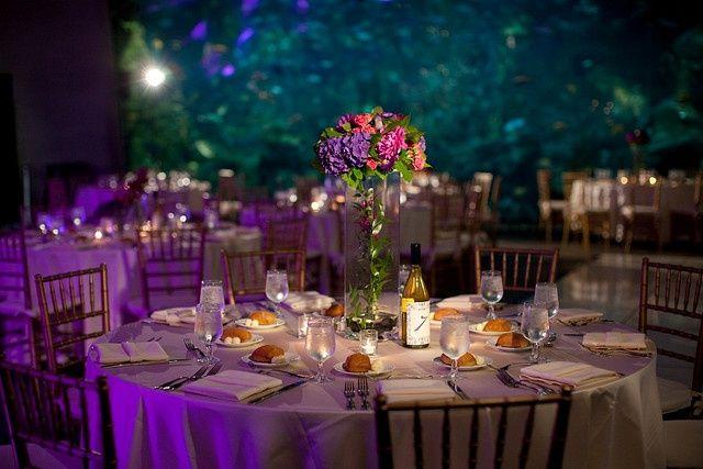 17 Best Images About Wedding Lighting Iluminacion De