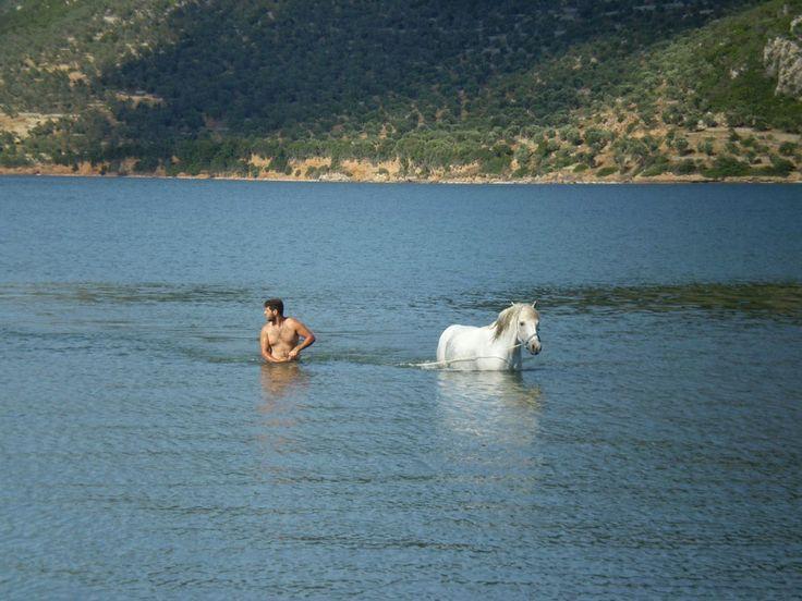 Lesvos Greece