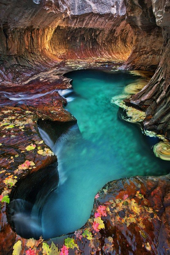 "Emerald pool at Subway, Zion National Park, Utah. Zion National Park is one of the most stunning places on earth. This is a vista from one of the hikes inside the park. Blue and Green pools tucked inside a cavernous rock that got it's name ""Subway"" because it feels like one."