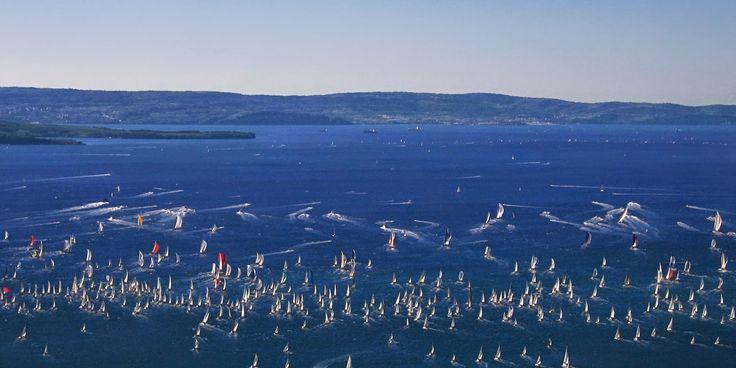 """Sempre record di imbarcazioni partecipanti alla Barcolana, regata vinta quest'anno da """"Esimit Europa"""""""