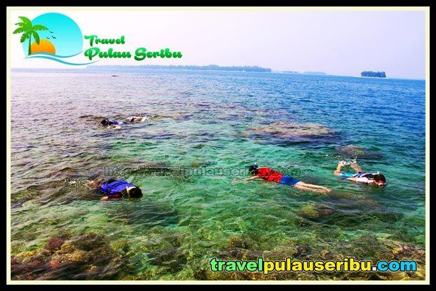 PULAU PUTRI - Kenyamanan Penginapan dan banyaknya fasilitas yang disiapkan, sehigga dapat menarik pengunjung untuk berwisata ke Pulau Putri.