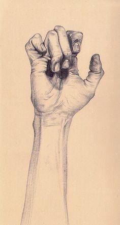 Hand : beautiful henrietta harris drawings