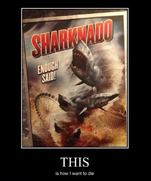 SciFi channel movies rock! Megashark vs giant octopus. Mega shark vs crocosaurs. Mega piranha.