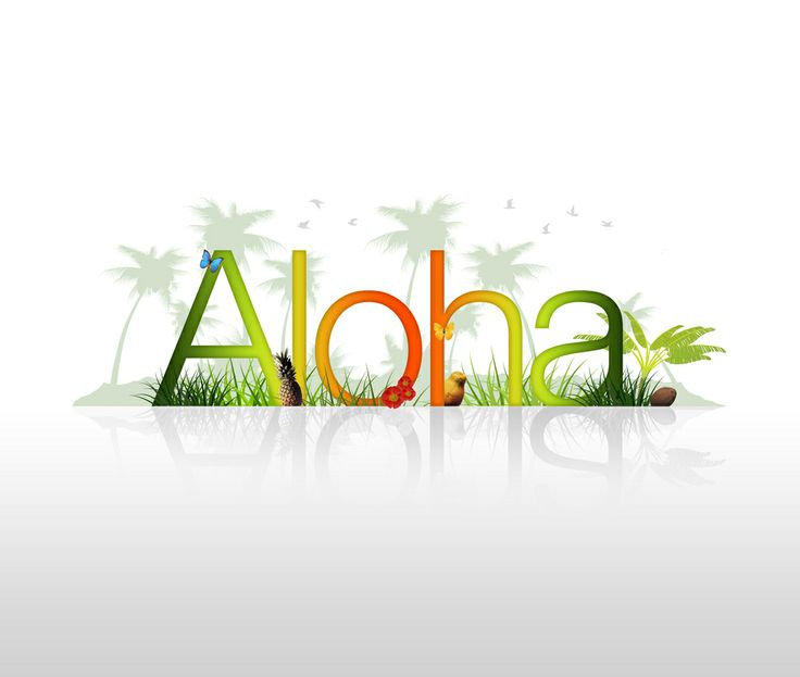 With its attractive beach locations, perfect sunset kissing the landscape, and the blue oceans, no wonder Hawaii is regarded as the ultimate vacation destination of couples - whether newlyweds or lovers. With this, Hawaii became a well-known holiday destination across the globe.