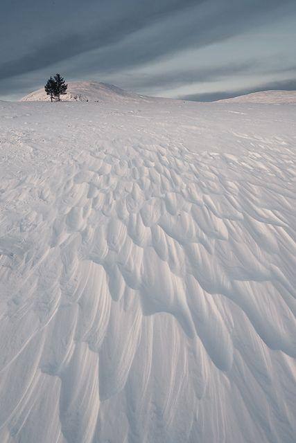 Valdalsfjellet, Hedmark fylke, Norway, 27 December 2014.
