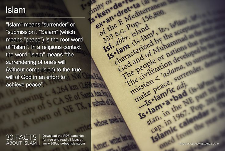 """milnor muslim 30 facts about islam the 5 pillars of islam: declaration of faith in one god that muhammad is a prophet of god formal prayer five times a day poor-due """"tax"""" - 25% of one's excess wealth given to the needy once a year pilgrimage to mecca at least once if physically/financially able fasting during the daylight hours in the month of ramadan."""