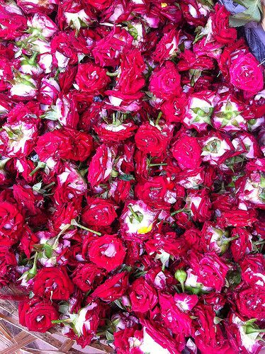 dried roses in India. By Asha DC