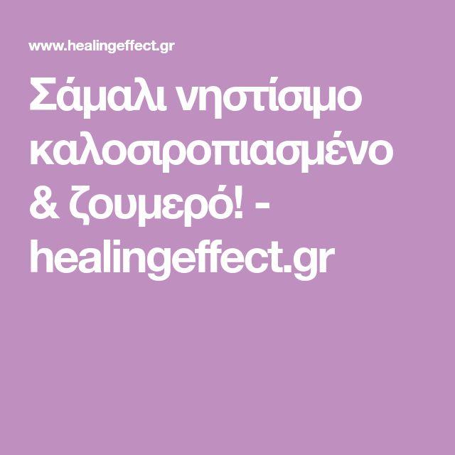 Σάμαλι νηστίσιμο καλοσιροπιασμένο & ζουμερό! - healingeffect.gr