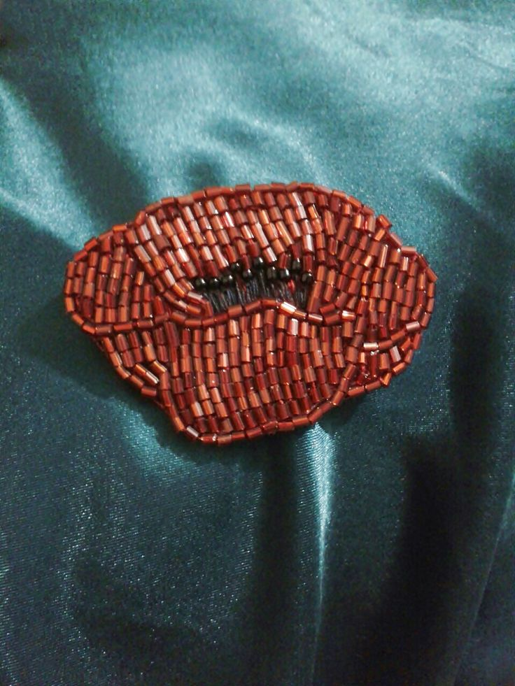 The poppy brooch :)
