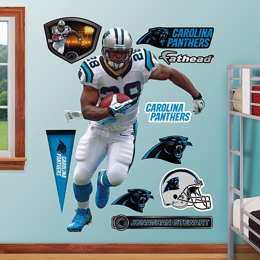 Jonathan Stewart, Carolina Panthers