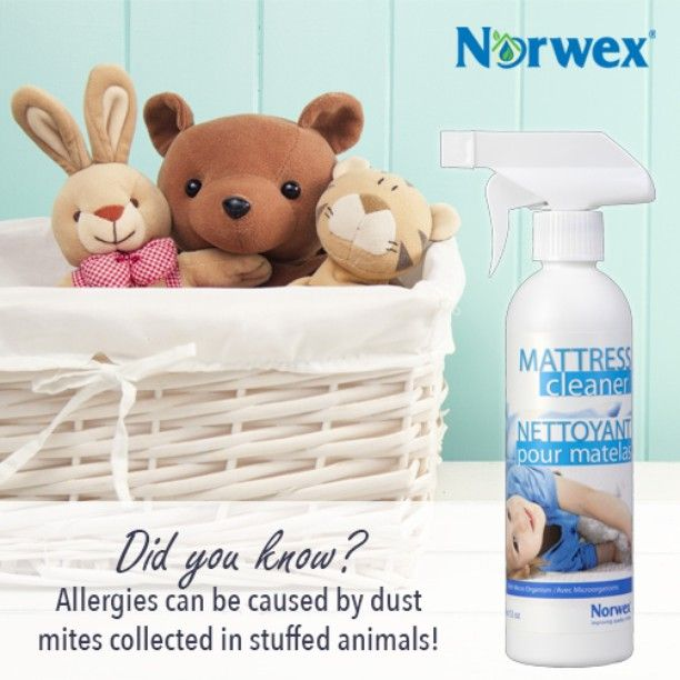 If you or your kids suffer from indoor allergies, then you know the exposure to dust mites can lead to #sneezing, runnynose, itchy eyes and more. Try the Norwex Mattress Cleaner which is an enzyme-based formula designed to help remove organic material and provide a deep cleaning!