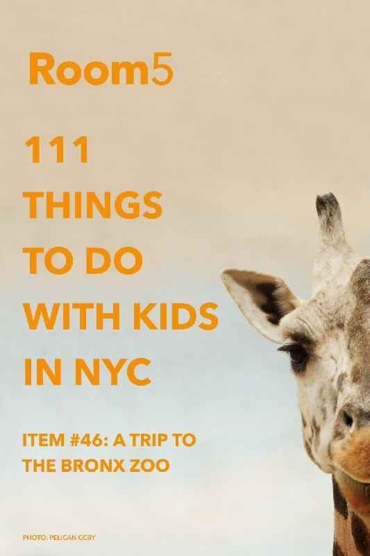 #46: Take your kids to visit the Bronx Zoo...