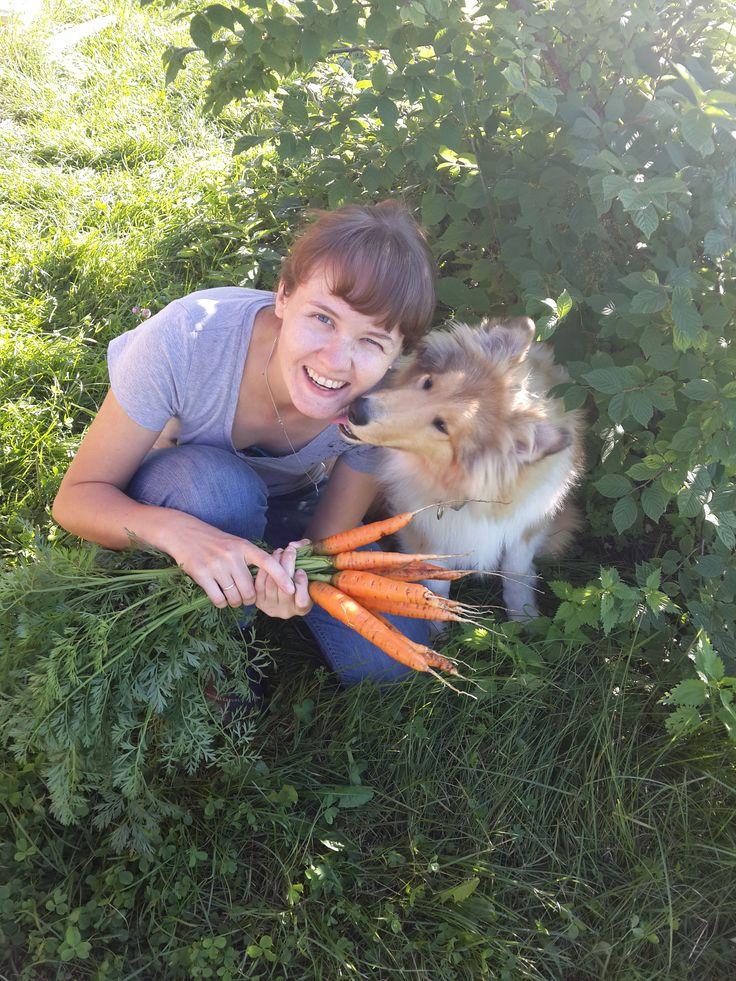 Собираем урожай, а в перерывах целуемся:)))