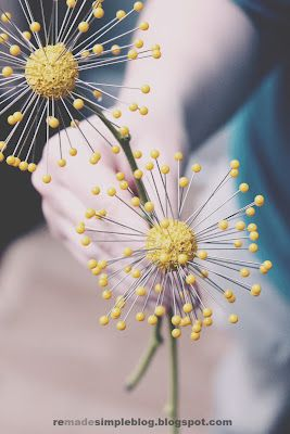 Fun yellow pincushion flowers from Kristina (check out her blog if you haven't already!)