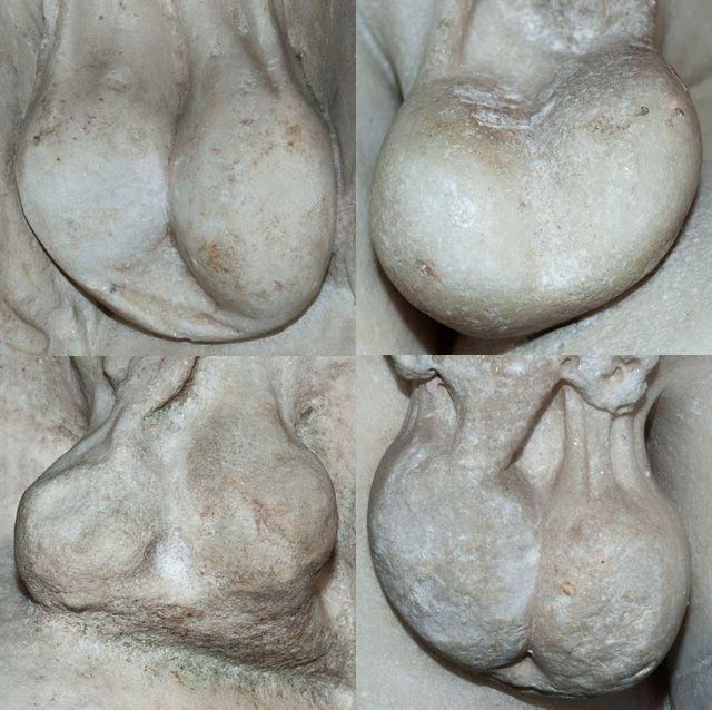 shemale butt sluts