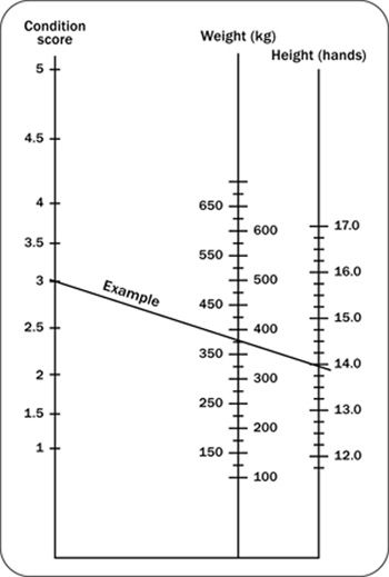 Nomogram for estimating body weight from body condition score and height measurement