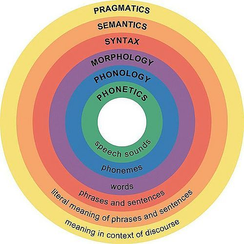 Learning morphology awareness contributes many combined aspects when processing knowledge into linguistics.