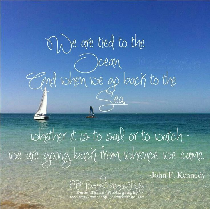 we are tied to the ocean inspirational quotes pinterest