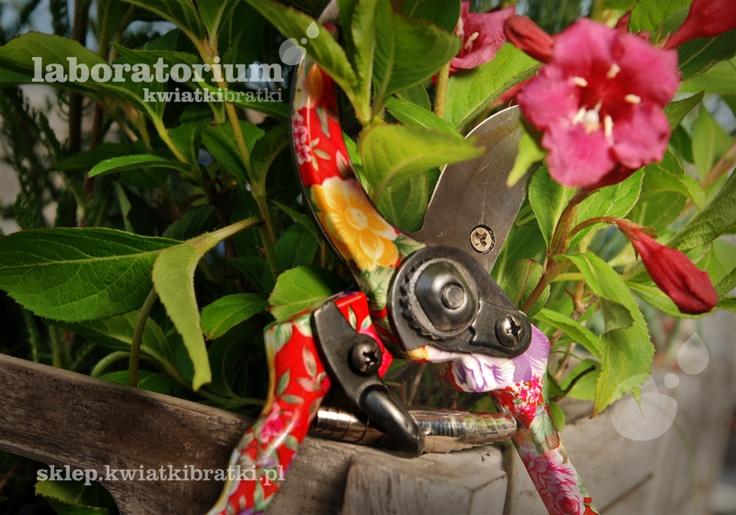 Sekator w kwiaty.    https://sklep.kwiatkibratki.pl/shop-2/linia-w-kwiaty/sekator-w-kwiaty/