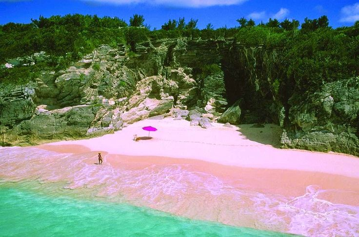 Pink sands beach in harbour island bahamas the sand is a for Bahamas pink sand beaches