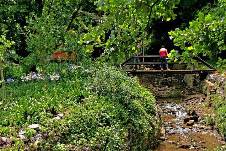 A garden retreat in #Sandton #Johannesburg.