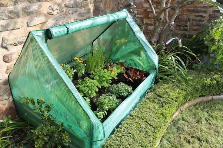 Drop Over Greenhouse with Green PE Cover 1250L x 950W x 920H. Developed to drop over 1200 x 900 x 300 garden beds or general garden applications.