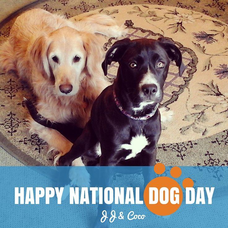Happy #NationalDogDay from JJ & Coco! :)