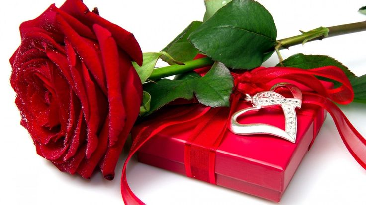 Nice Red Rose Box - Best Wallpaper HD 4