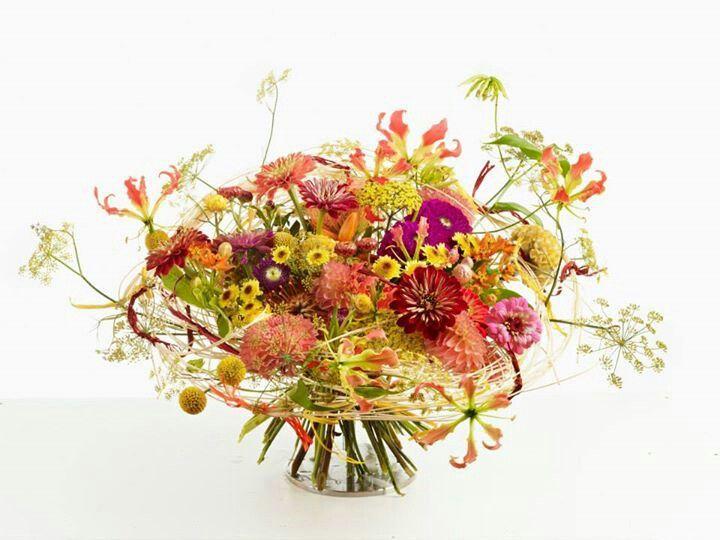 Vegetativo circular Proporción 1-1 Relacionado 1 a 1 Profundidad alta/media/baja. Carácter decorativo.