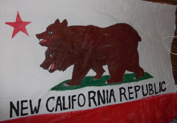 NCR, New California Republic, Flag by Elite Paranoid | Bear Flag Museum
