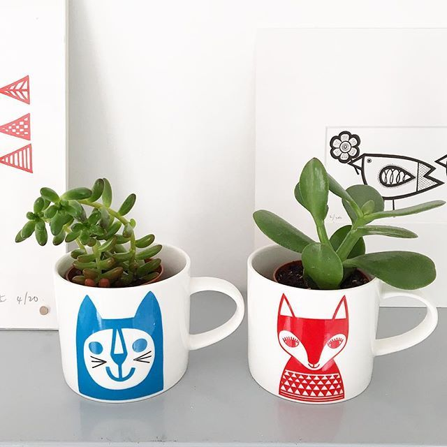 My mini animal mugs are just the perfect size for my little succulents from Totnes market! Mugs from @makeinternational #janefoster #janefostermugs #succulents #retrohome #scandihome #retromugs #janefostermugs
