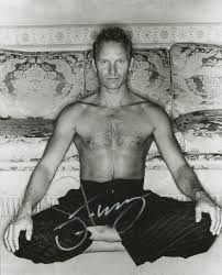Image result for sting and yoga
