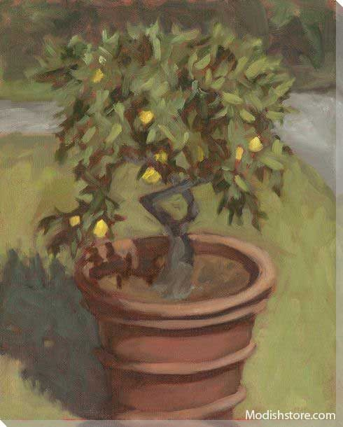 Lemon Tree at Villa Oliva - Art Classics, Ltd.