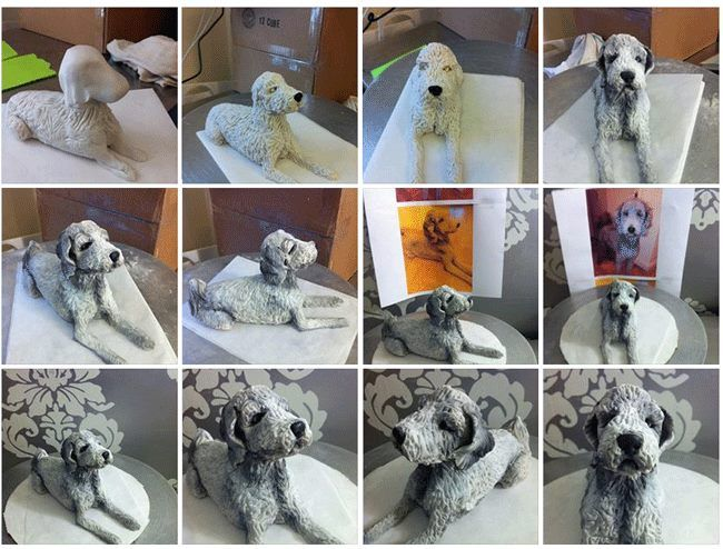 Dog Cake Step By Step Tutorial