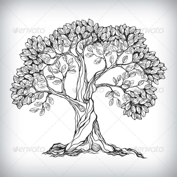 Hand drawn tree symbol oak tree drawingsdrawing treesdoodle drawingstree drawings pencilnature