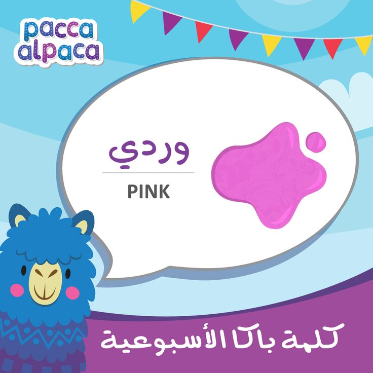 This week Pacca learns how to say pink in Arabic!