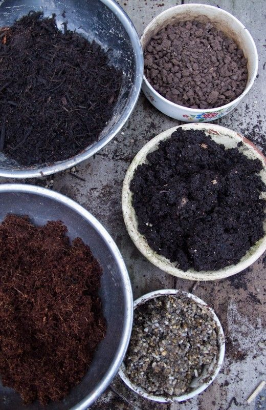 Making your own homemade potting mix or seed raising mix is easy and cheap too! Find out how in just a few simple steps!